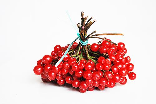 Подруга угощала замороженными ягодами калины и расхваливала ее как отличное средство при простуде...