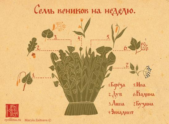 7 русских веников
