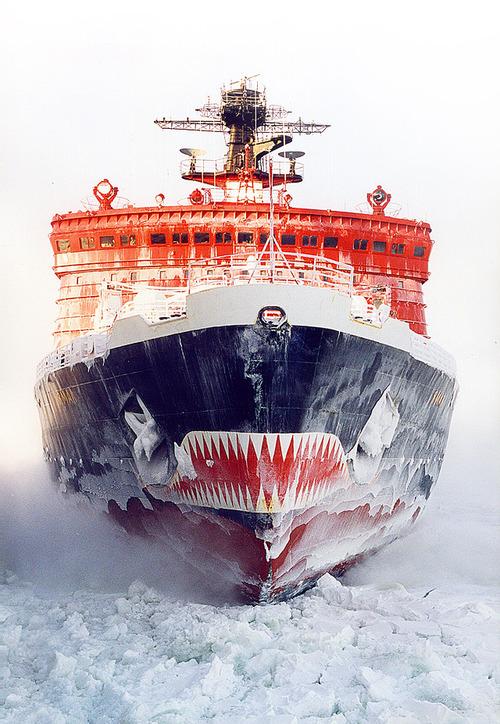 7 главных фактов о русской Антарктиде