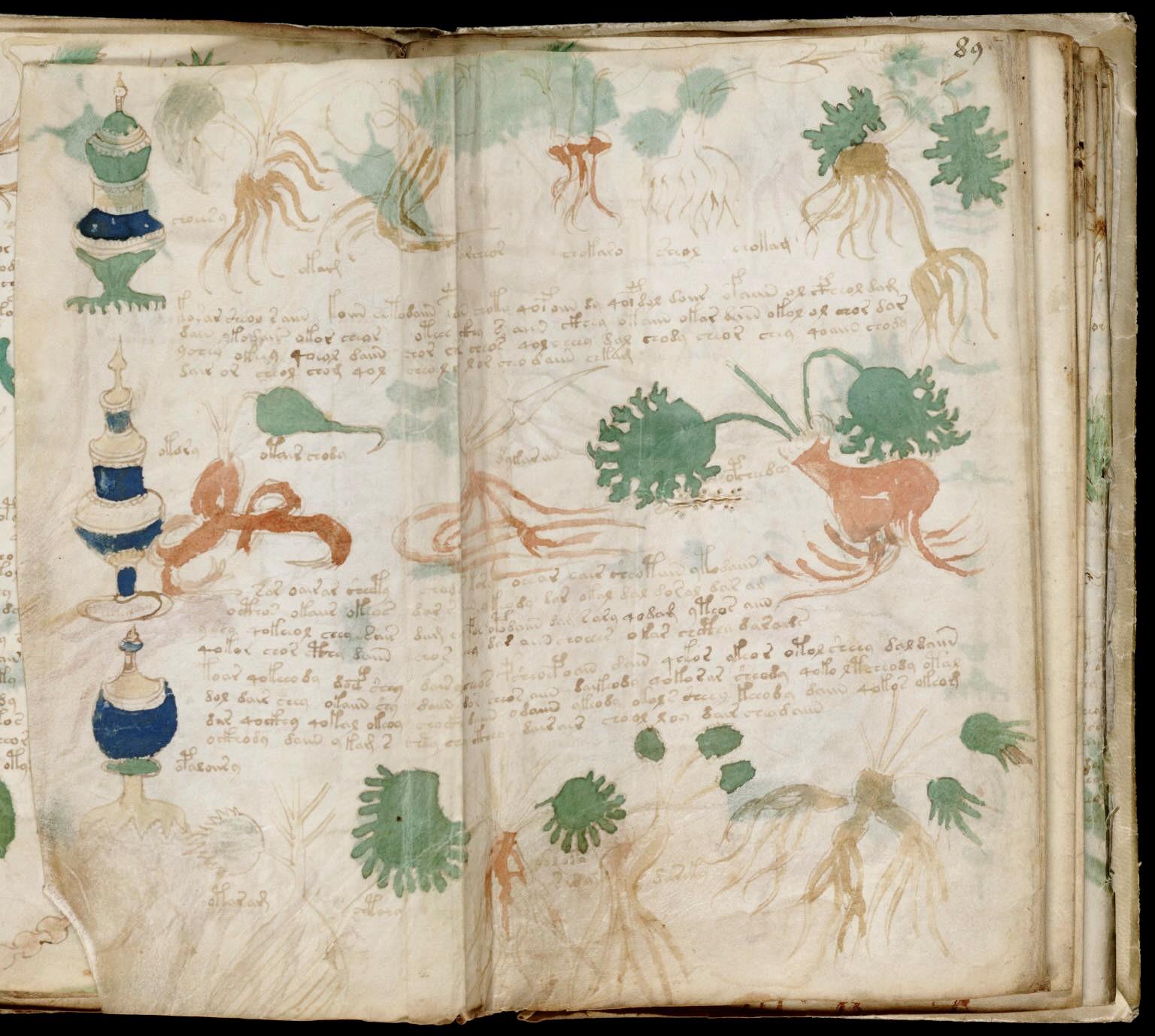 Voynich-Manuscript-1006234.jpg