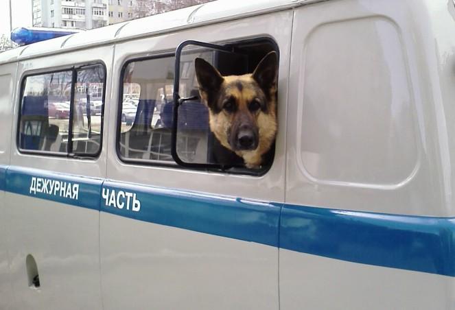 http://russian7.ru/wp-content/uploads/2014/06/Zasada_na_perekrestke_kirova-cyurupy-663x452.jpg