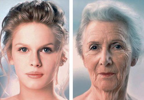 возраст и пол по фотографии