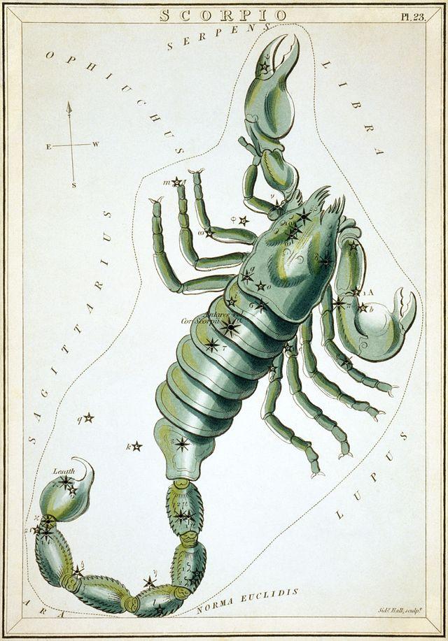 В созвездии Скорпиона