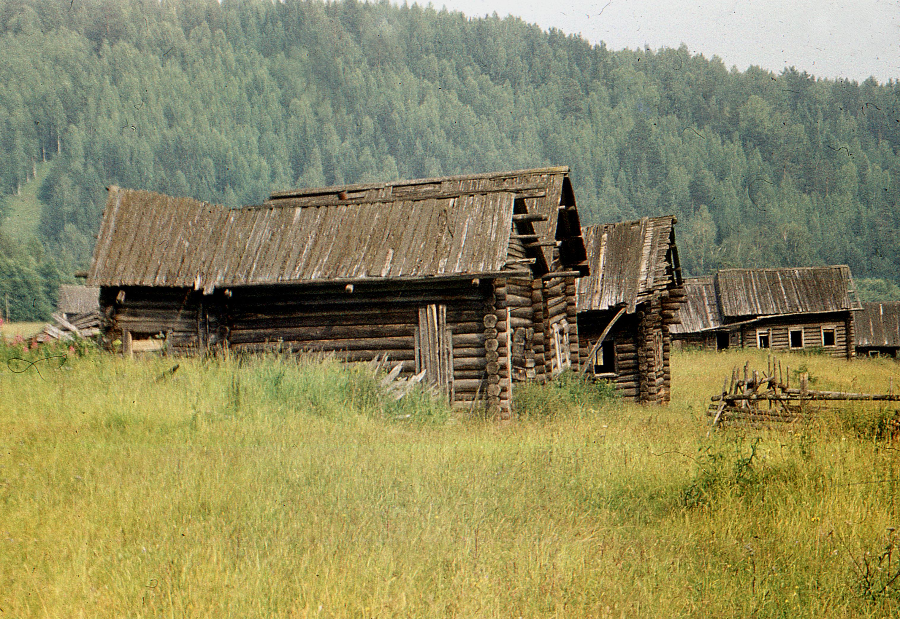 Русская села на лицо 12 фотография