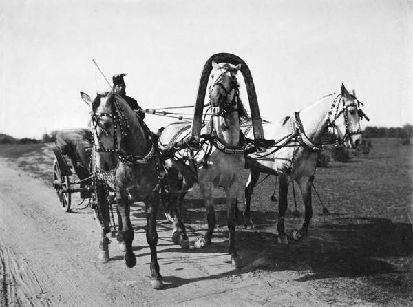 В России ездили именно на тройке лошадей?