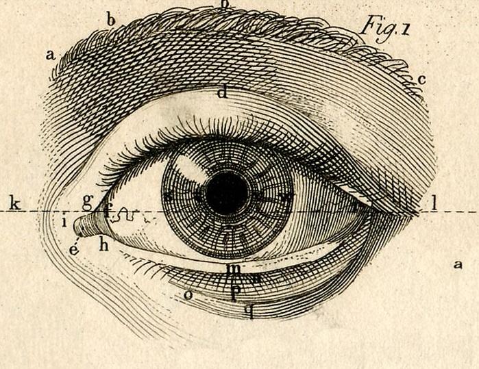 Почему люди при общении редко смотрят в глаза друг другу