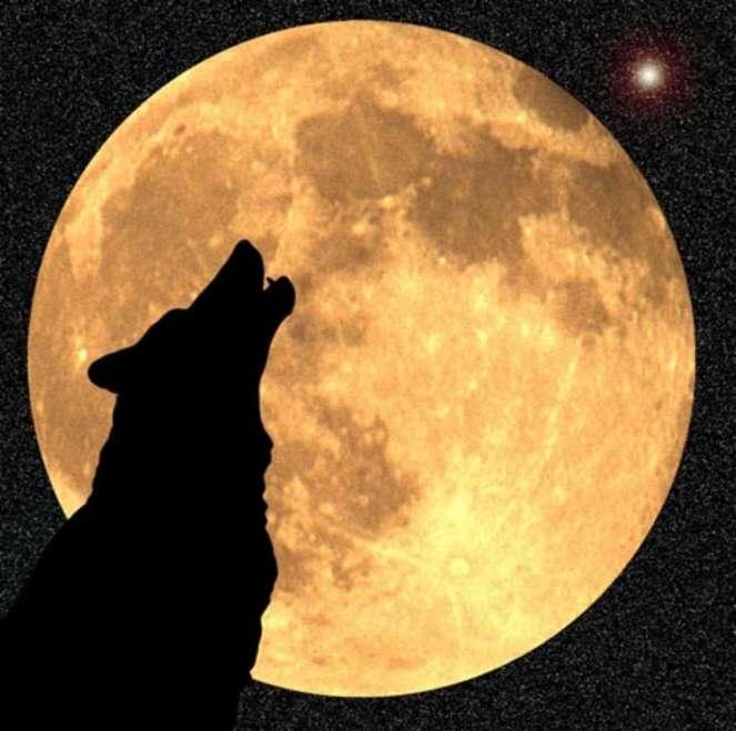 Как появилась Луна (5 фото)