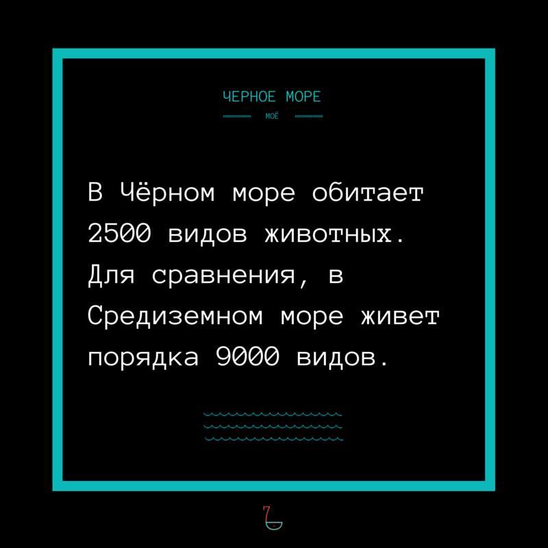 телефоны, часы короткие факты черного моря мебель техника, том
