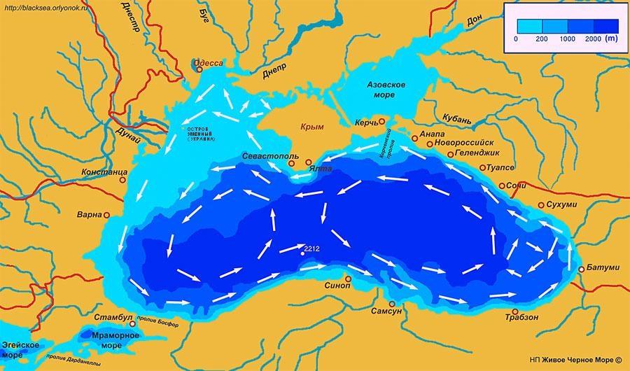схему течений Черного моря