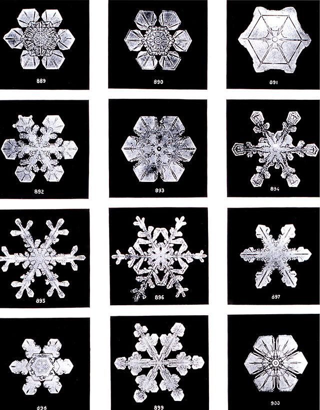 Что вы никогда не знали о снеге