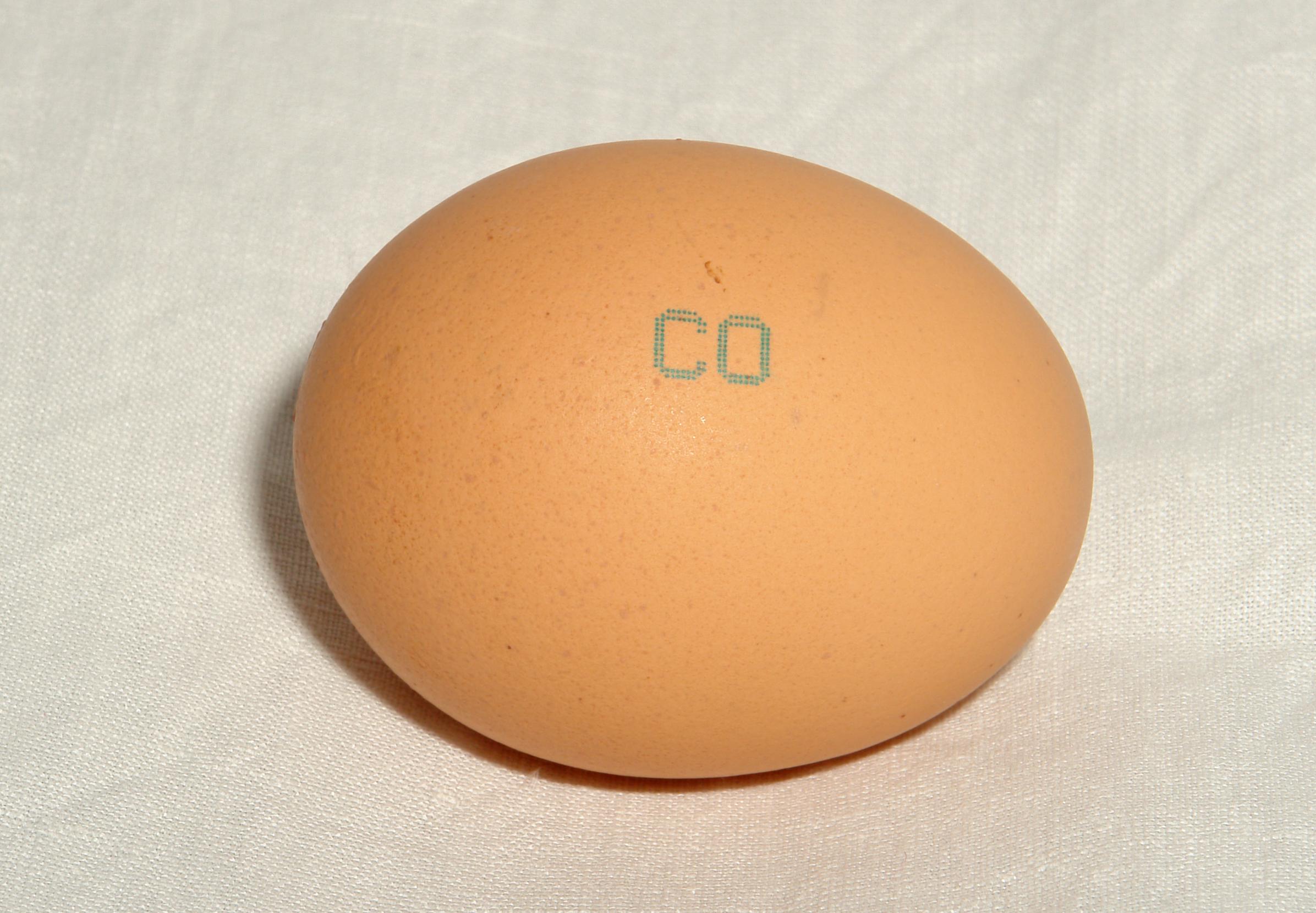 Чем полезно сырое куриное яйцо