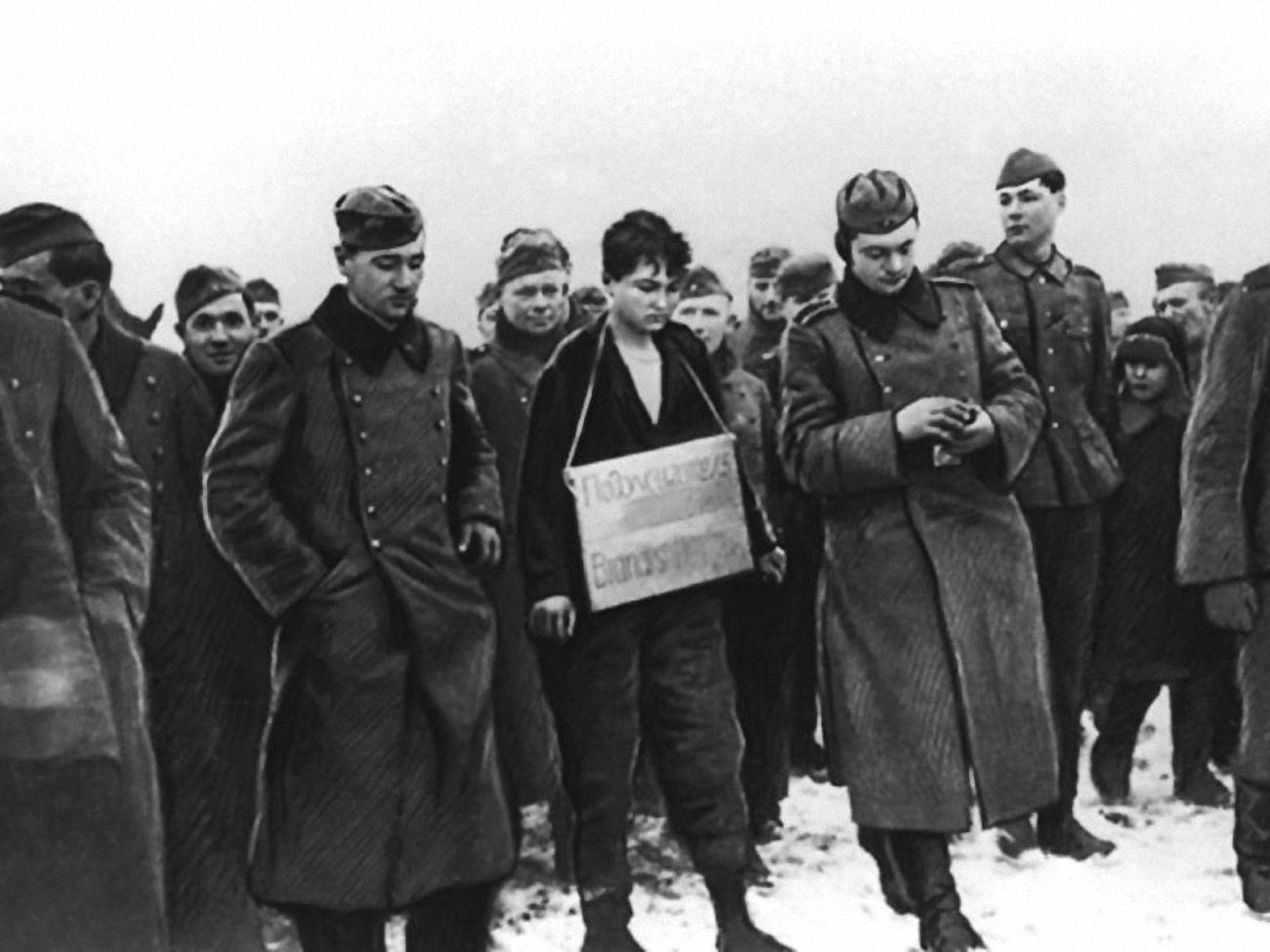 Настоящая история: почему жители деревни Петрищево радовались казни Зои