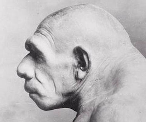 Почему не стало неандертальцев