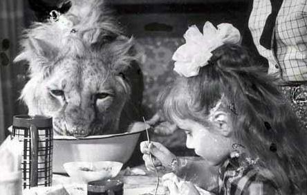 Берберовы: трагедия в семье, которая держала в доме льва