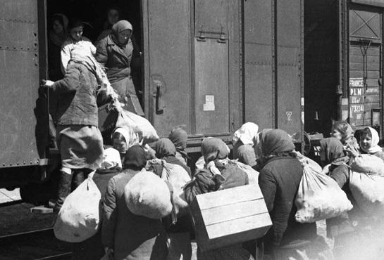 В какие города СССР сбегали советские люди от войны   Русская семерка